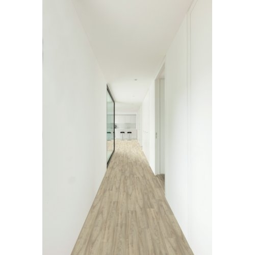 Parquet stratifié clipsable Xperience4 plus 8 mm - Orme Caillou 055 XP4055_Balterio_Xperience_4_Plus_Orme_Caillou_Interior01