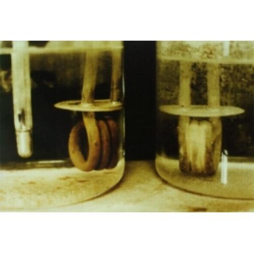 Anti-calcaire électronique D-CALC Plus (4-5 personnes maxi) Crbst gembloux 202 75 20dpi 20
