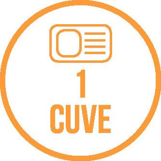 1-cuve